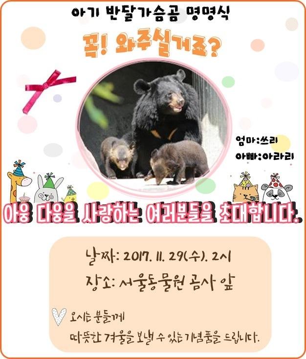 아기반달가슴곰 명명식 꼭 와주실거죠? 아웅다웅을 사랑하는 여러분들을 초대합니다. 날짜:2017.11.27(수)2시, 장소:서울동물원 곰사앞, 오시는분들께 따뜻한 겨울을 보낼 수 있는 기념품을 드립니다.