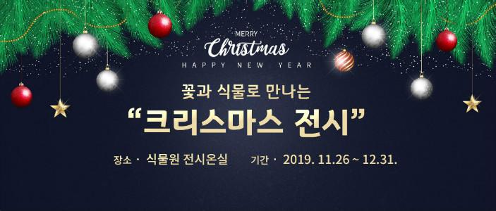 꽃과 식물로 만나는 크리스마스 전시, 2019. 11. 26.(화) ~ 12. 31.(화), 식물원 전시온실