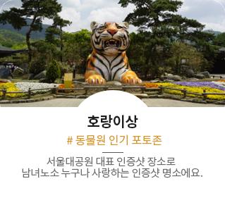 호랑이상 #동물원 인기 포토존:서울대공원 대표 인증샷 장소로 남녀노소 누구나 사랑하는 인증샷 명소에요.