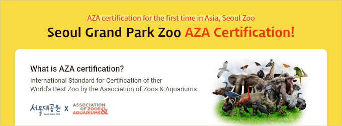 AZA certification for the first time in Asia, Seoul Zoo Seoul Grand Park Zoo AZA Certification! What is AZA certification International Standard for Certification of ther World's Best Zoo by the Association of Zoos & Aquariums
