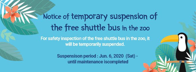 [Notice of temporary suspension of  the free shuttle bus in the zoo] For safety inspection of the free shuttle bus in the zoo, it will be temporarily suspended.  Suspensison period: Jun. 6, 2020 (Sat)-until maintenance is completed