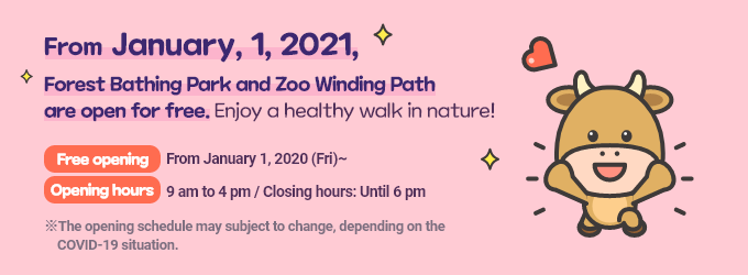From January 1, 2021, Forest Bathing Park and Zoo Winding Path are open for free. Enjoy a healthy walk in nature! Free opening: From January 1, 2020 (Fri)~,Opening hours: 9 am to 4 pm / Closing hours: Until 6 pm   The opening schedule may subject to change, depending on the COVID-19 situation.